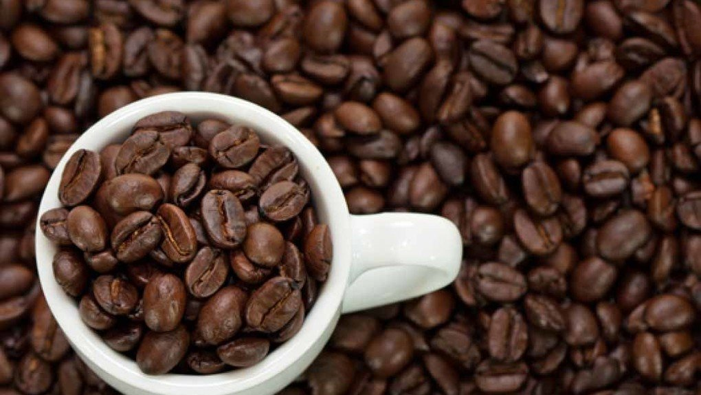 Study Increase Endurance With Caffeine And L Carnitine
